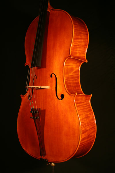cello-cremona-2005-decke Cello Modell Cremona 2005