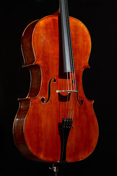 Decke des Modells Deutscher Musikinstrumentenpreis 2004