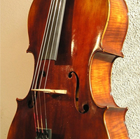 Picture of the award-winning cello 2004