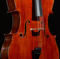 Picture of the award-winning cello 2012